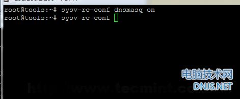 Enable DNSMASQ Daemon